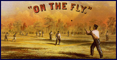 """On the Fly."" Click to enlarge."